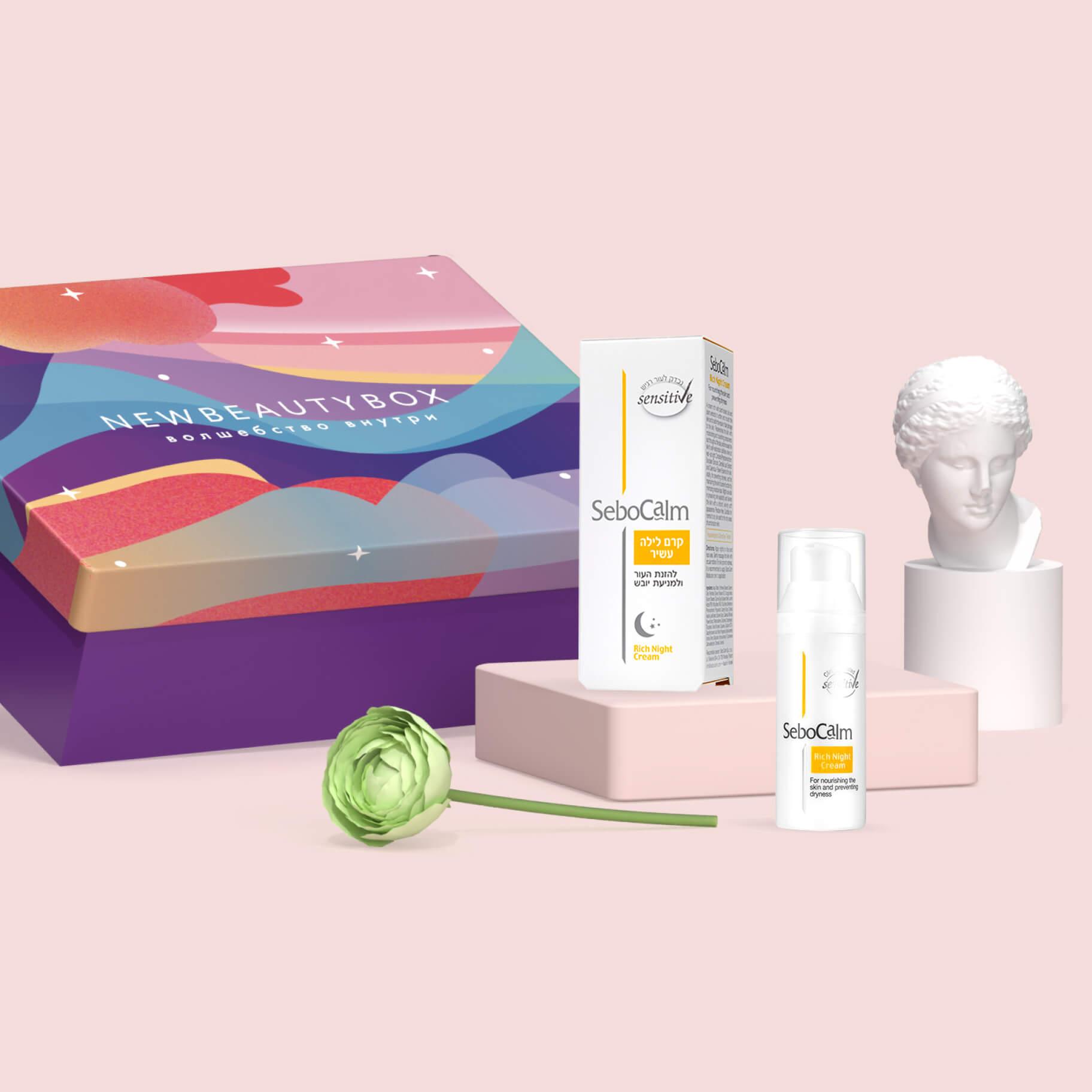 Dream Box Limited